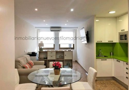 """Céntrico apartamento de un dormitorio con todos los gastos incluidos, en C/Princesa_Madrid-zona pza. de """"Los Cubos"""""""